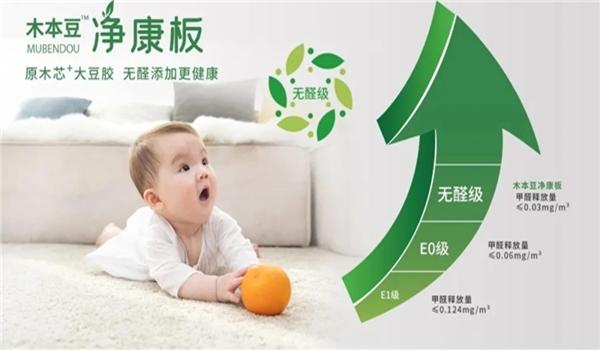 木本豆凈康板 (6).jpg